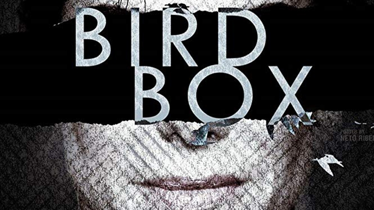 Critique du film Bird Box disponible sur Netflix