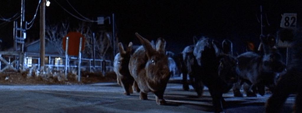 Les Rongeurs de l'Apocalypse (Night of the Lepus)